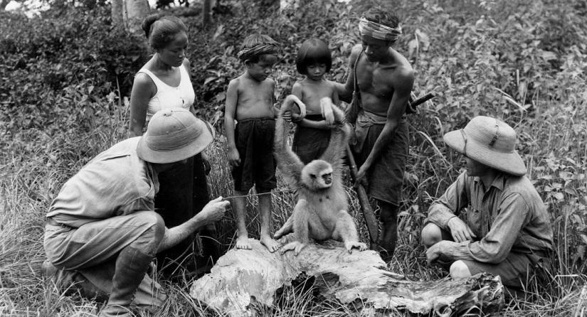 Those Restless Natives