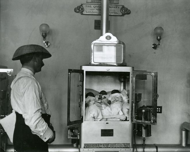 78215d_incubatorbabies_alland2502